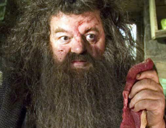 Rubeus Hagrid Robbie Coltrane Harry Potter